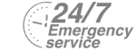 24/7 Emergency Service Pest Control in Richmond, TW9, TW10. Call Now! 020 8166 9746