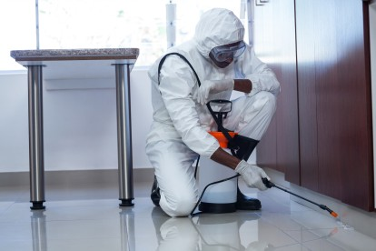 Emergency Pest Control, Pest Control in Richmond, TW9, TW10. Call Now 020 8166 9746